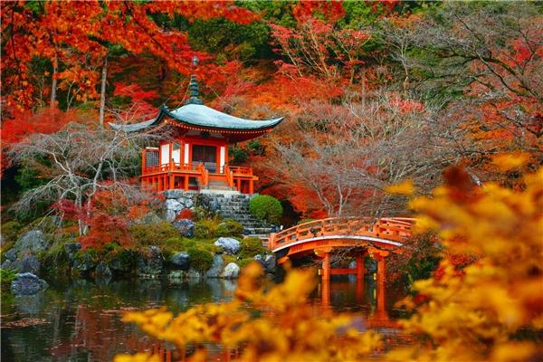 Vùng Kansai cổ của Nhật Bản nằm ở vị trí 38. Trong ảnh là cảnh sắc mùa thu tuyệt đẹp tại Nhật.Ảnh:New York Times