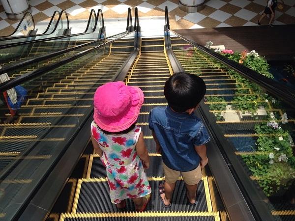 Tuyệt đối không để trẻ nhỏ đi một mình trên thang cuốn. Ảnh: Internet