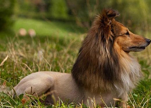 """""""Em chỉ thích... 'trần tụi với thiên nhiên' cùng mái tóc dài suôn mượt thôi!"""" (Ảnh: Internet)"""