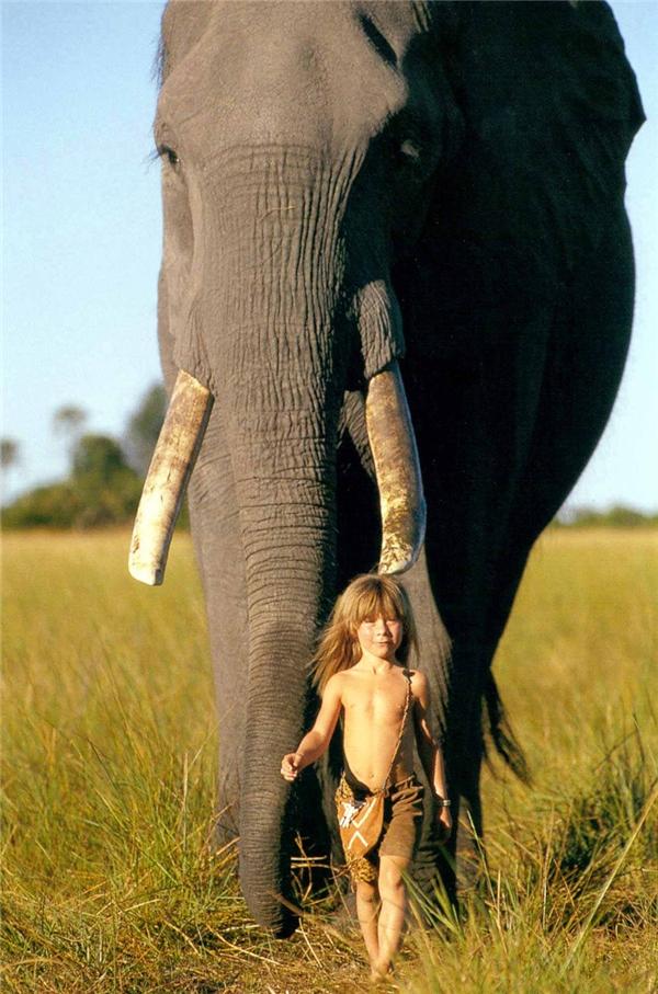 Tippi và voi. (Ảnh: Internet)