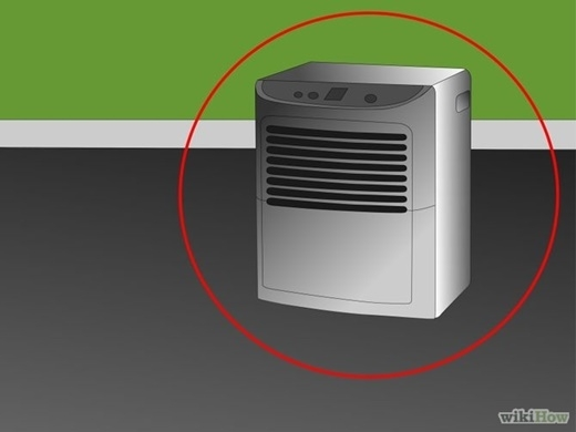 """Nấm mốc đặc biệt thích môi trường ẩm ướt vì qua đó chúng có thể sinh sản một cách dễ dàng. Sử dụng máy hút ẩm để loại bỏ triệt để độ ẩm không khí trong căn nhà của bạn, bạn sẽ thấy được kết quả khả quan trong việc tiêu diệt những """"con quái vật"""" cứng đầu này. (Nguồn Internet)"""
