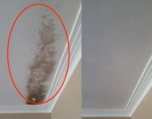 Trần nhà trước và sau khi được làm sạch(Nguồn Internet)