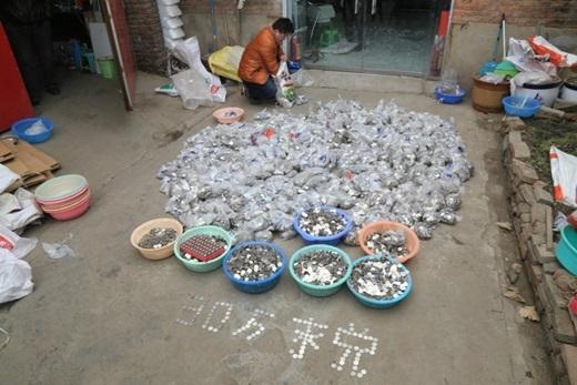 Hiện tại, chưa biết trường hợp của ông Trương sẽ được giải quyết thế nào, khi số tiền khá lớn.(Nguồn News.163.com)