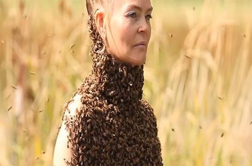 Kinh hãi cô gái để 10.000 con ong phủ kín ngực trần thay cho áo