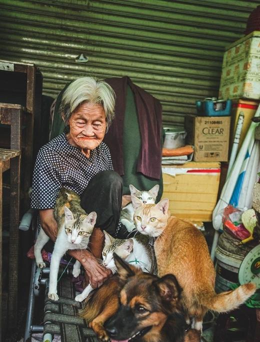 Cụ Tám ngày ngày bán rau, nuôi đàn chó mèo - cũng là những người bạn nhỏ, những niềm vui nhỏ bé đơn giản. (Ảnh: Internet)