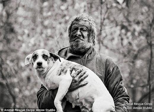 Một người đàn ông vô gia cư ở Tennessee đã giao nộp lại 31 con chó cho Tổ chức Giải cứu Động vật Hoa Kỳ. (Ảnh: Daily Mail)
