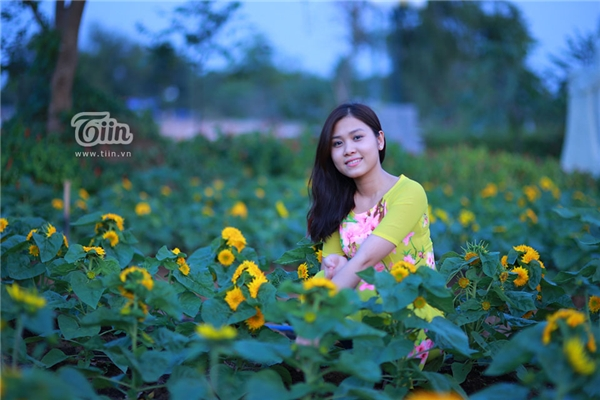 Các bạn trẻ khắp nơi bắt đầu kéo về chụp hình nhằm lưu lại những hình ảnh đầu tiên với loại hoa mặt trời này.