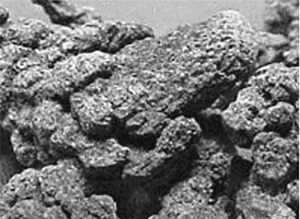 Thành phần chính của thạch tín là Oxit Asen. (Ảnh: Internet)