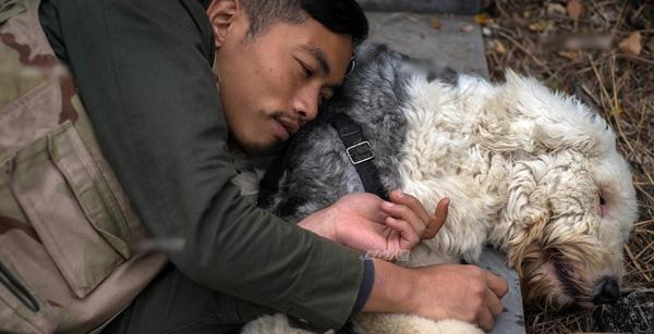 Chú chó cùng anhChuquấn quýt với nhau. (Ảnh: Internet)