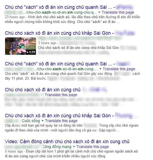 Hàng loạt trang đưa tin về chú chó xách xô đi ăn xin cùng chủ. (Ảnh: Internet)