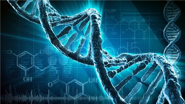 Các gen nhiễm bệnh sẽ bị loại bỏ? (Ảnh: Science)