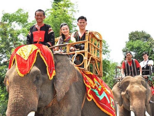 Cô dâu trong hình có tên Trà My, là con gái củaông Đàng Năng Long – người sở hữu nhiều voi nhất nước. Trong đám cưới đã có sự xuất hiện của một đoàn voi 20 con khiến nhiều người thích thú. Tuy đây không phải là lần đầuở Đak Lak diễn ra một đám cưới có voinhưng tiểu đoàn voi này chính được xem là là đoàn rước dâuấn tượng nhất. (Ảnh: Internet)