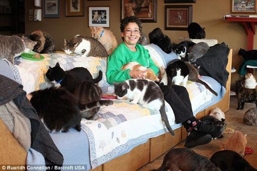 Chúng được tự do tung hoànhtrong ngôi nhà rộngcó đến 5 phòng ngủ. (Ảnh: Daily Mail)