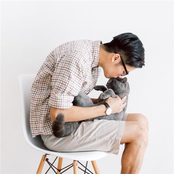 """Bé mèo màJV - Mie Nguyễnnhận nuôi cũng mới trải qua """"cơn bạo bệnh"""".(Ảnh: Internet)"""