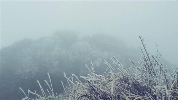 Dân mạng sốt sắng với hình ảnh miền núi phía Bắc xuất hiện băng giá