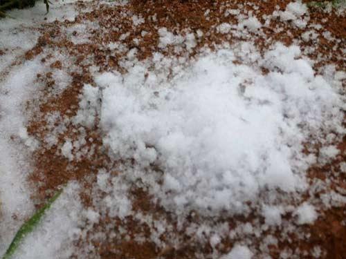 Tuyết rơi: du khách háo hức tham quan, người dân lo lắng khổ sở