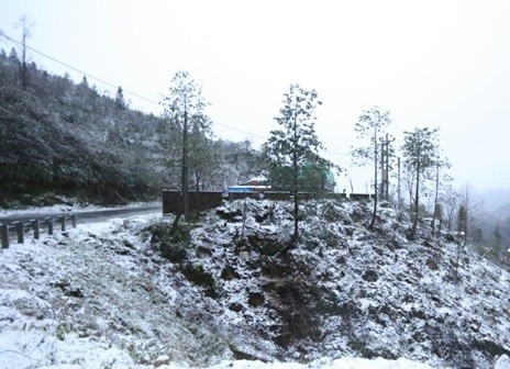 Tuyết rơi trắng xóa khắp nơi. Ảnh: Internet