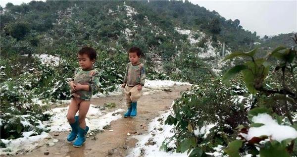 Hình ảnh ba em nhỏ đã lấy nước mắt của cộng đồng mạng. Ảnh: FB
