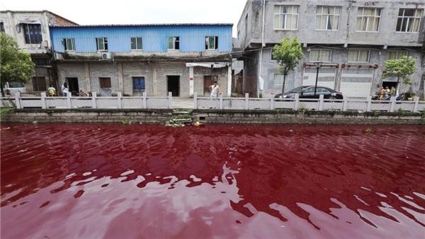 Tương tự vào tháng 7/2014, nước tại một con sông chạy qua thành phố Ôn Châu, tỉnh Chiết Giang, Trung Quốc cũng bất ngờđổi màu. Theo đó, chỉ sau 1 giờ đồng hồ, cả con sông đã chuyển thành màu đỏ như máu, gây hoang mang cho người dân sinh sống tại đây. Ảnh: Internet