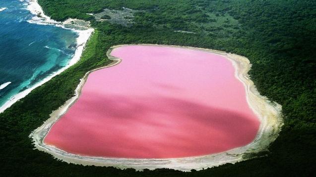 Đến nay, các nhà khoa học vẫn chưa tìm ra nguyên nhân khiến nước hồ có màu hồng độc đáo như vậy. Ảnh: Internet
