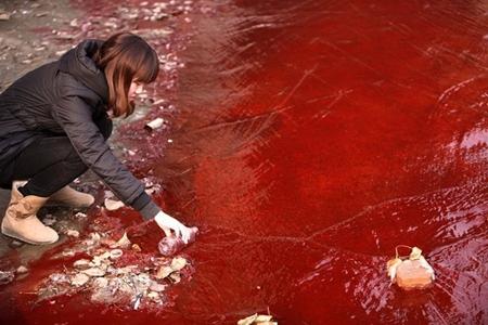 Cuối năm 2011, con sông Jianhe chảy qua thành phố Lạc Dương , tỉnh Hà Nam , Trung Quốc đã chuyển màu nước đỏ như máu. Ảnh: Internet