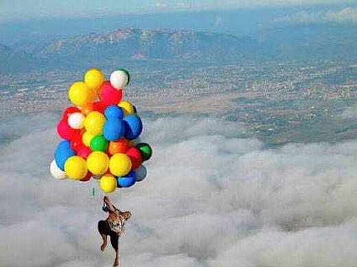 Phiêu giữa không trung với bóng bay. (Ảnh: Internet)