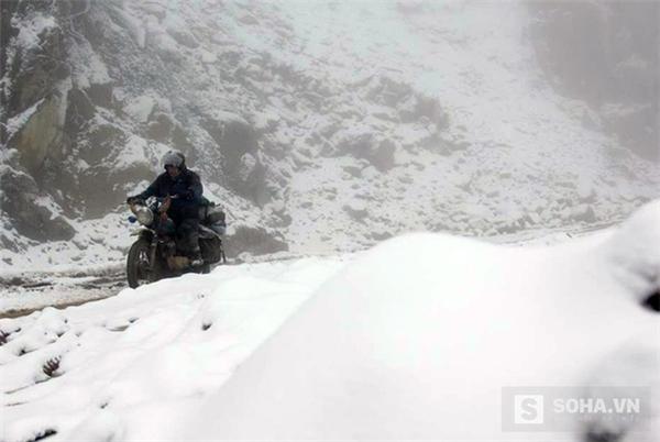 Nghệ An: Tuyết rơi ngày càng dày hơn, nhiều trâu bò chết vì rét