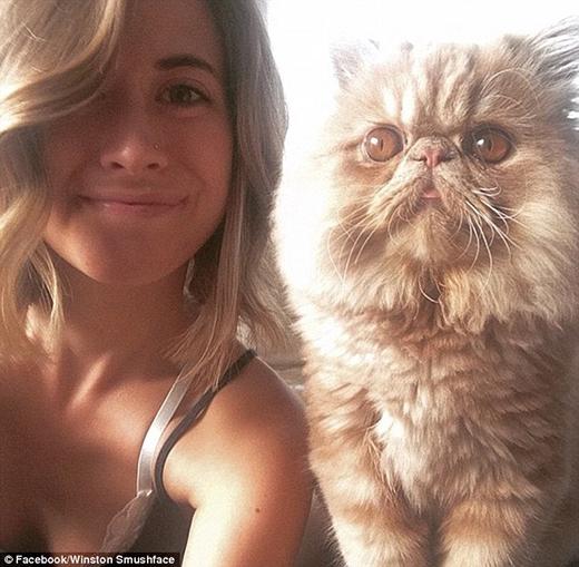 Jones lập ra Instagram cho Winston với mục đích bày tỏ tình yêu mình dành cho chú mèo cưng. Ngay sau đó ngày càng có nhiều người theo dõi trang cá nhân của Winston cũng vì tình cảm dành cho chú. (Ảnh: Internet)