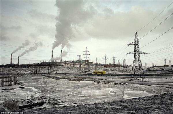 Tuy nhiên, môi trường nơi đây bị tàn phá nặng nề. (Ảnh:Elena Chernyshova)