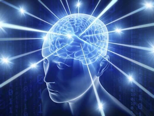 Não của con người sẽ hoạt động mạnh hơn khi nắm tay.(Ảnh: Internet)