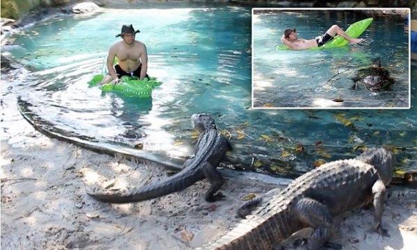 """Người đàn ông bơi trong hồ cá sấu khiếncho người xem""""thót tim"""". (Ảnh: Whatsthefuzzabout Wordpress)"""