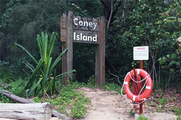 Bạn cần khoảng nửa ngày để khám phá và trải nghiệm công viên Coney Island.(Ảnh: Internet)