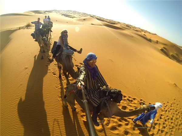 Cưỡi lạc đà ở sa mạc Sahara