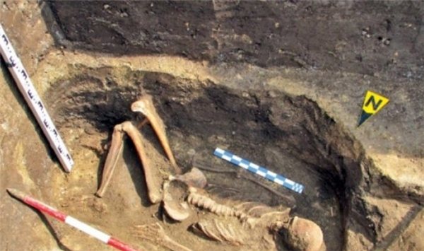Bộ xương của người khồng lồ được phát hiện tại Romania. Ảnh: Internet