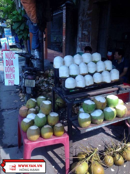 Quán nước dừa miễn phí bên đường.