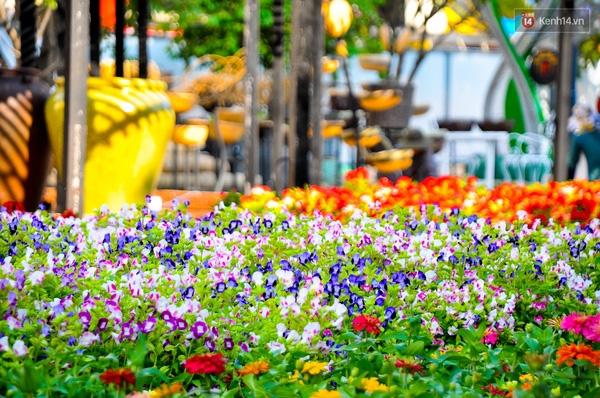 Nhiều loại hoa tươi với những màu sắc rực rỡ đã được mang đến đường hoa năm nay.