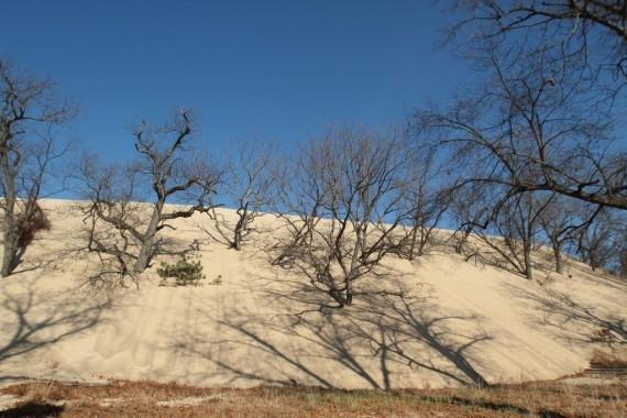 Đụn cát núi Baldy.