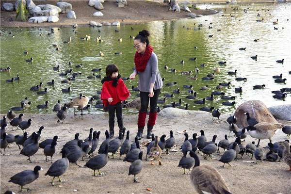 Nhiếp ảnh gia Quốc Huy – bạn của Thúy Nga cũng qua Mỹ nhân dịp này và muốn chụp cho hai mẹ con một bộ ảnh mùa xuân để làm kỉ niệm. - Tin sao Viet - Tin tuc sao Viet - Scandal sao Viet - Tin tuc cua Sao - Tin cua Sao