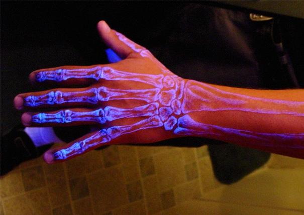 Không cần chụp X-quang mới thấy xương nhé.(Ảnh: Bored Panda)