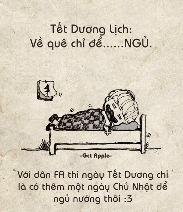 Tết Dương hay Tết Âm lịch đều chỉ ngủ. (Ảnh: Internet)
