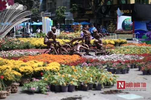 Đường hoa Nguyễn Huệ ngập tràn sắc xuân ngày khai hội