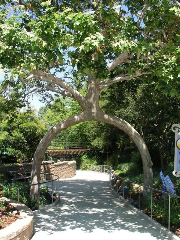 """Một tác phẩm trong vườn cây """"kì quái"""" của ông Axel.(Ảnh: Earthables)"""