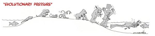 Chúng ta đã tiến hóa, để rồi quay lạinghiên cứutổ tiên của mình! (Ảnh: Bored Panda)