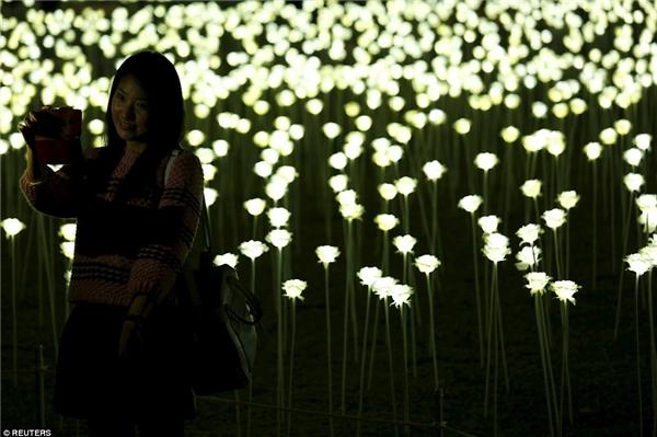 Khu vườn kì diệu này đã phần nào biến ước mơ trở thành nhân vật nữ chính trongmột bộ phim Hàn lãng mạn của nhiều cô gái thành hiện thực.(Ảnh: AP Hongkong)