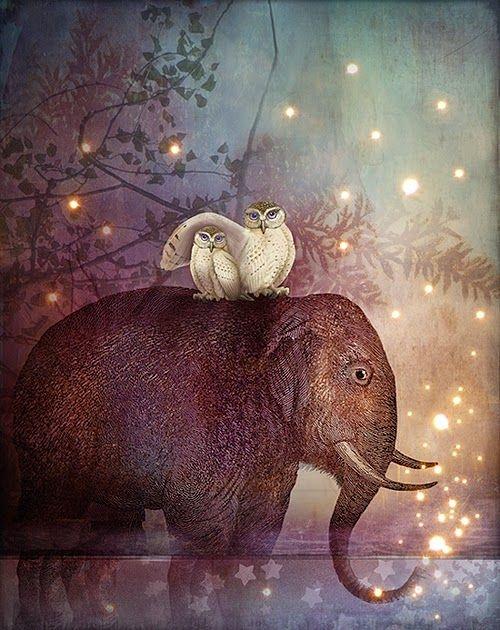 Nếu nhìn thấy voi đầu tiên, bạn là một người hoạt ngôn. (Ảnh: Internet)