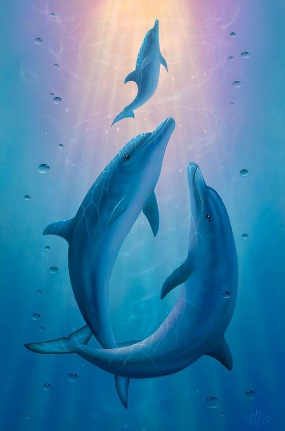 Người nhìn thấy cá heo đầu tiên là người khá bảo thủ. (Ảnh: Internet)