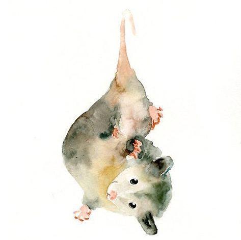 Người thấy chuột luôn có cảm giác bất an. (Ảnh: Internet)