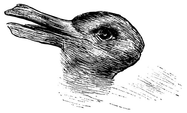 Hoa mắt, chóng mặt với bức tranh 'Vịt hay Thỏ'