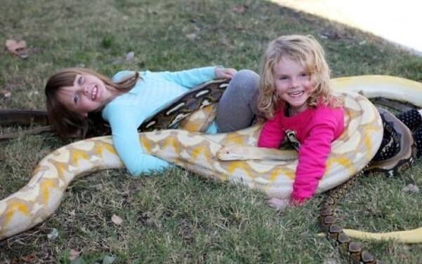 Hai bé gái đang vô tư chơi đùa với trăn và rắn. (Ảnh: Internet)
