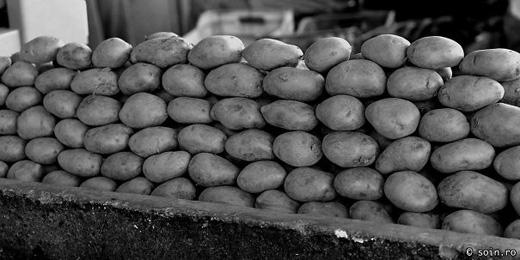 Chỉ là khoai tây thôi mà. (Ảnh: Bored Panda)